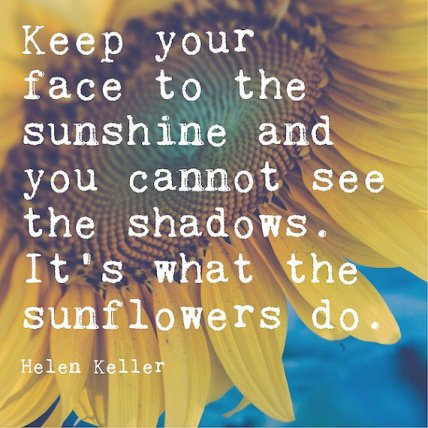 Image result for sunflowers quotes